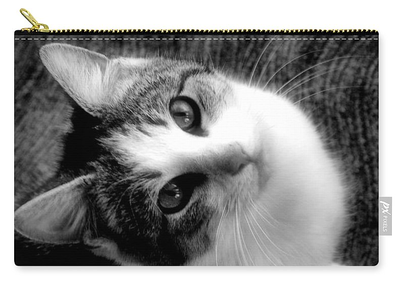 Cat Carry-all Pouch featuring the photograph Don't Ever Leave by Gaby Swanson
