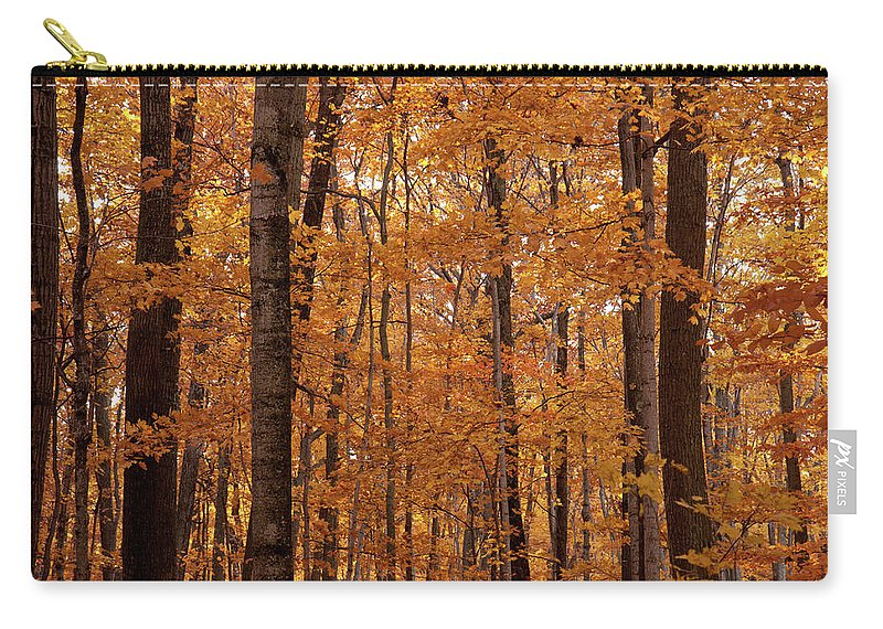 Landscape Carry-all Pouch featuring the photograph Door County No. 2 by M Bubba Blume