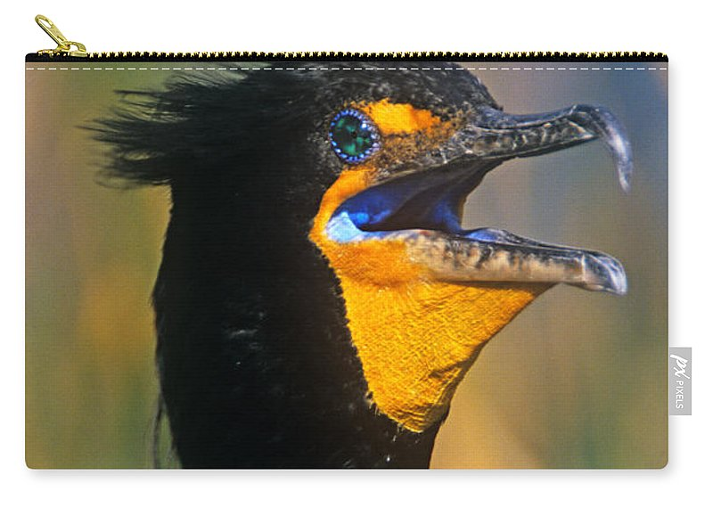Double-crested Cormorant Carry-all Pouch featuring the photograph Double-crested Cormorant by John Harmon