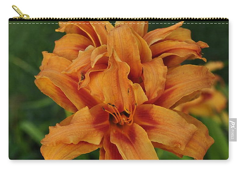 Orange Lily Carry-all Pouch featuring the photograph Double Day Orange by Penny Neimiller