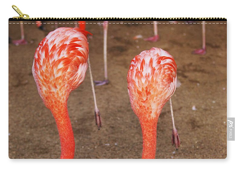 Zoo Carry-all Pouch featuring the photograph Double Dip by Jill Reger