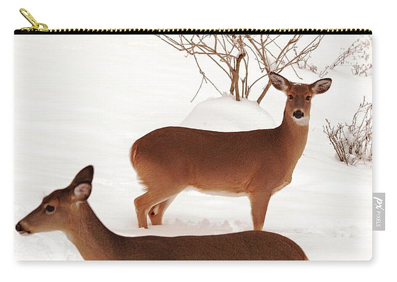 Deer Carry-all Pouch featuring the photograph Double Trouble by Lori Tambakis