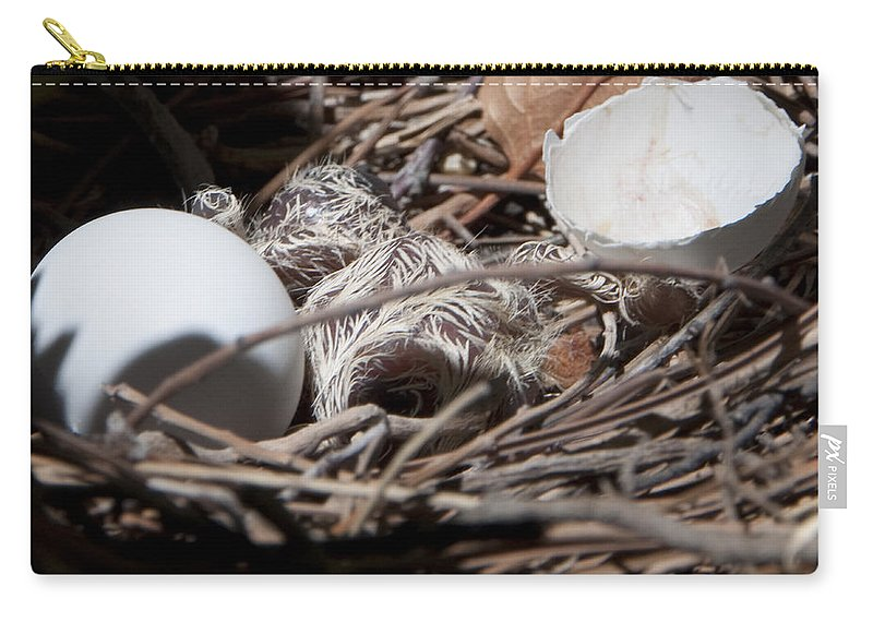 Nest Carry-all Pouch featuring the photograph Dove Hatchling by Steven Natanson