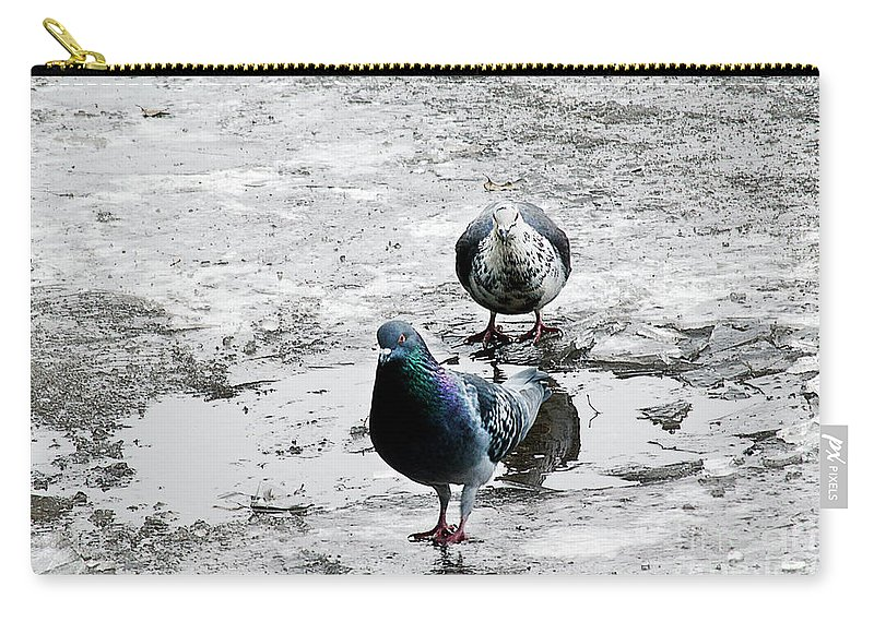 Dove Carry-all Pouch featuring the photograph Doves On The Street by Elvira Ladocki