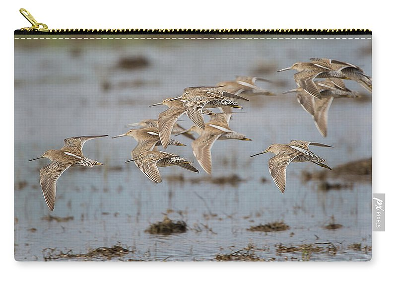 Ronnie Maum Carry-all Pouch featuring the photograph Dowitchers by Ronnie Maum
