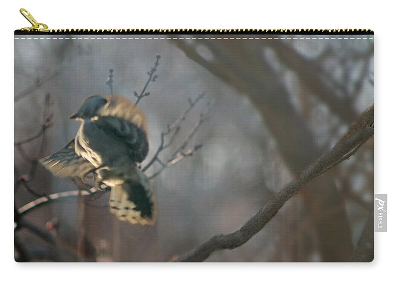 Nature Carry-all Pouch featuring the photograph Downey Woodpecker by Steve Karol
