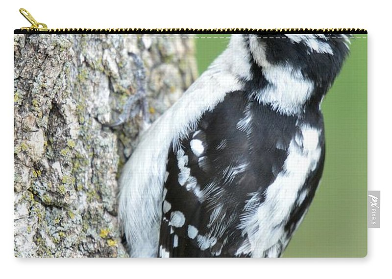 Animal Carry-all Pouch featuring the photograph Downy by Bonfire Photography