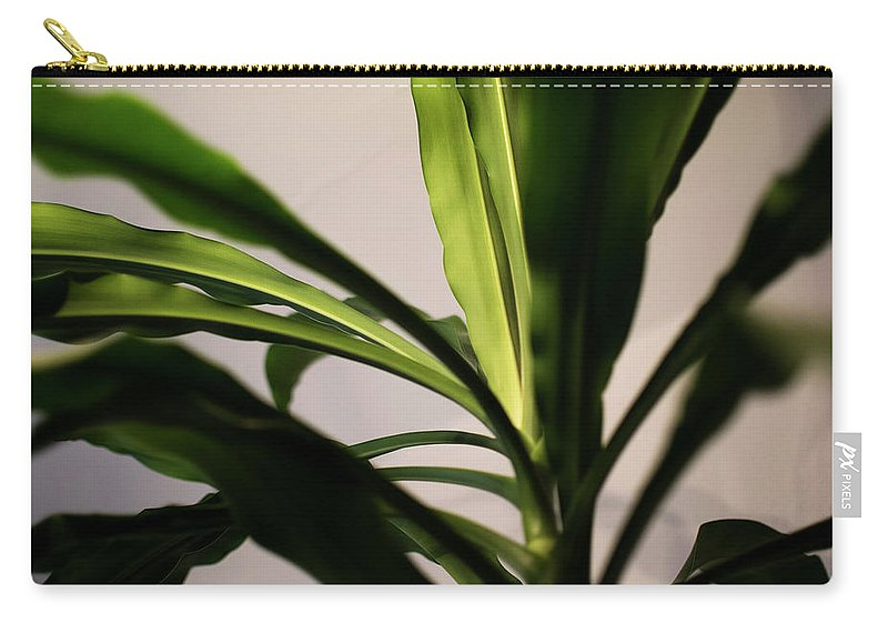 Dracaena Fragrans Carry-all Pouch featuring the photograph Dracaena Fragrans by Alicia Fdez