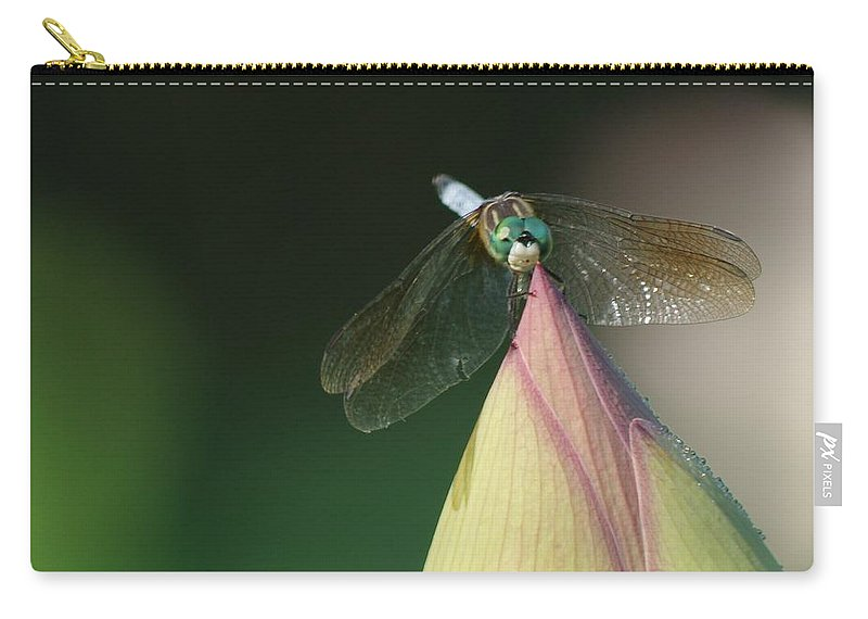 Dragon Fly Carry-all Pouch featuring the photograph Dragon Fly Lotus by Buddy Scott