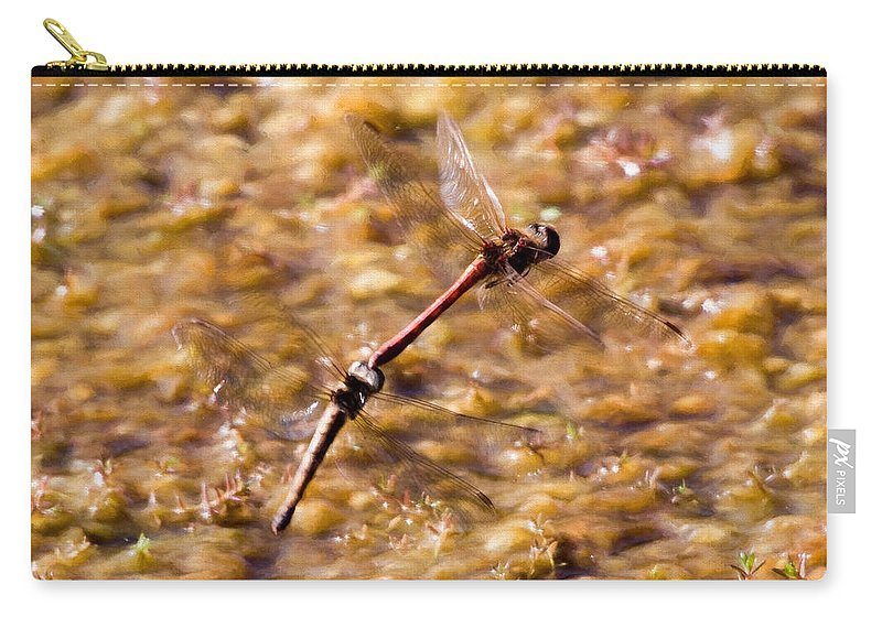 Anisoptera Carry-all Pouch featuring the digital art Dragonflies by Roy Pedersen