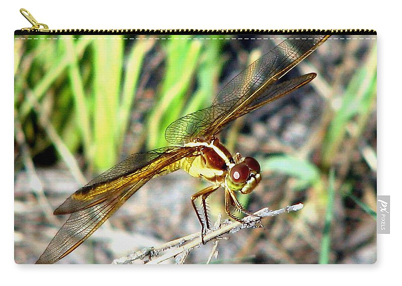 Dragonfly Carry-all Pouch featuring the photograph Dragonfly 1 by J M Farris Photography