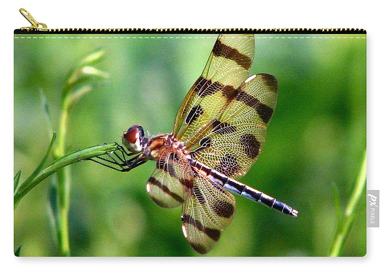 Dragonfly Carry-all Pouch featuring the photograph Dragonfly 10 by J M Farris Photography