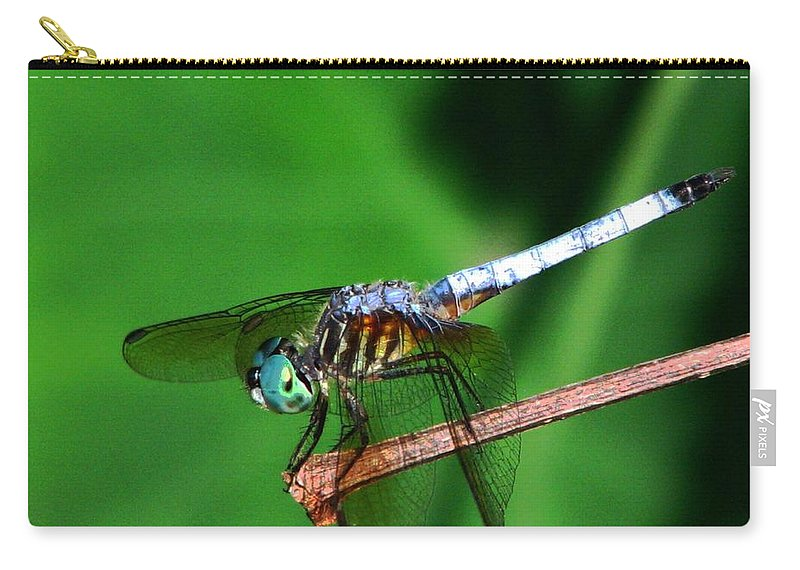 Dragonfly Carry-all Pouch featuring the photograph Dragonfly 11 by J M Farris Photography