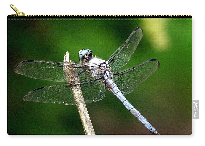 Dragonfly Carry-all Pouch featuring the photograph Dragonfly 12 by J M Farris Photography