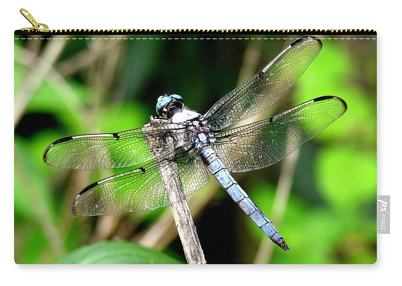 Dragonfly Carry-all Pouch featuring the photograph Dragonfly 13 by J M Farris Photography