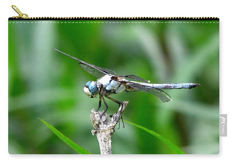 Dragonfly Carry-all Pouch featuring the photograph Dragonfly 15 by J M Farris Photography