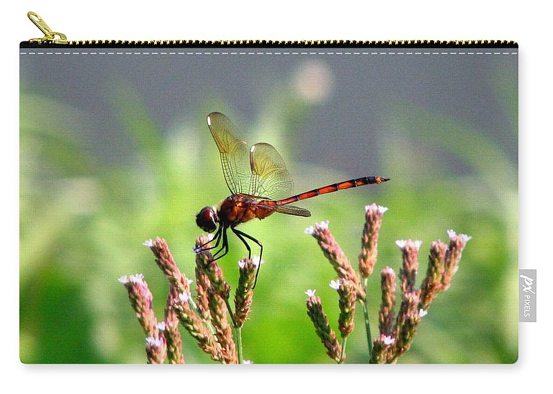Dragonfly Carry-all Pouch featuring the photograph Dragonfly 8 by J M Farris Photography