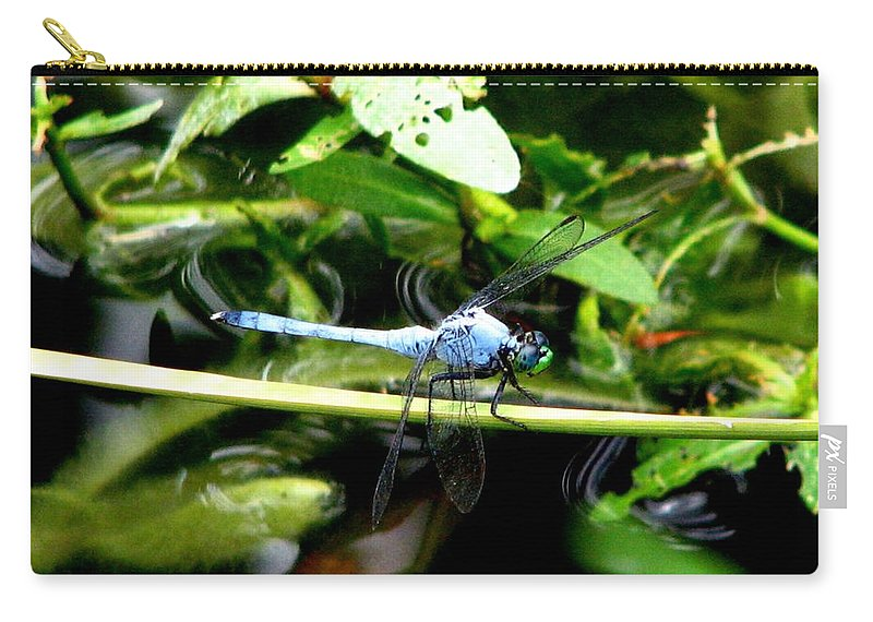 Dragonfly Carry-all Pouch featuring the photograph Dragonfly 9 by J M Farris Photography