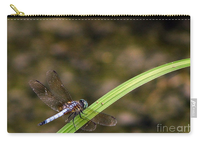 Dragonfly Carry-all Pouch featuring the photograph Dragonfly by Amanda Barcon