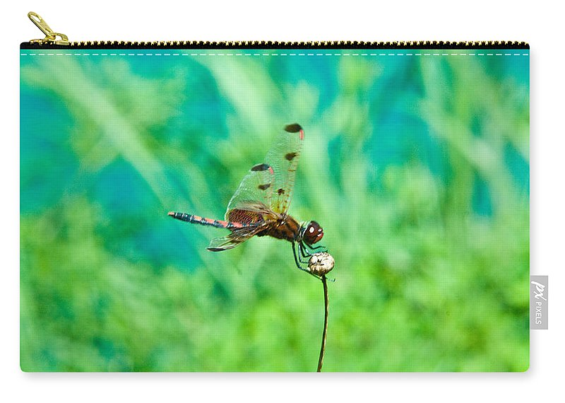 Dragonfly Carry-all Pouch featuring the photograph Dragonfly Hanging On by Douglas Barnett