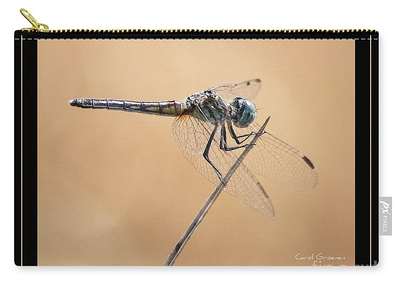 Dragonfly Carry-all Pouch featuring the photograph Dragonfly Needlepoint With Border by Carol Groenen