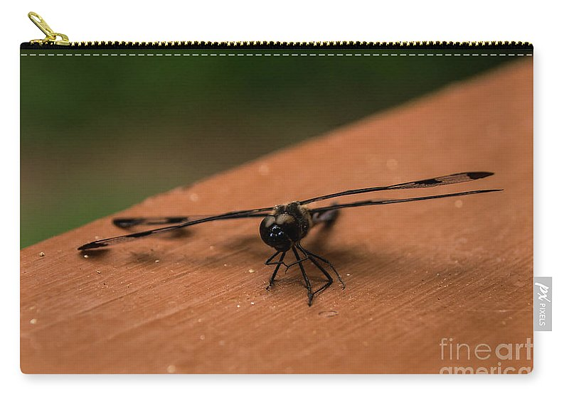 Black Carry-all Pouch featuring the photograph Dragonfly On A Porch Railing by Arturo Vazquez