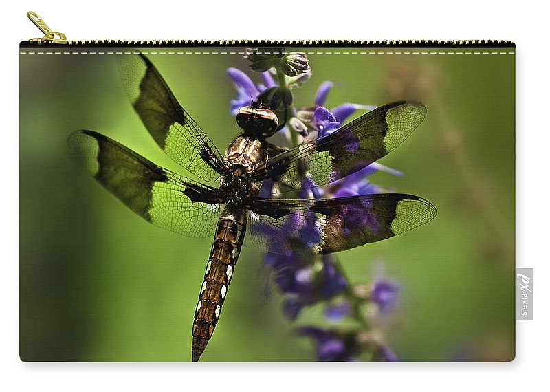 Dragon Fly Carry-all Pouch featuring the photograph Dragonfly On Salvia by Onyonet Photo Studios