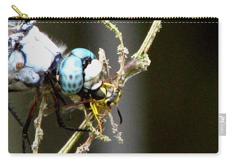 Dragonfly Carry-all Pouch featuring the photograph Dragonfly With Yellowjacket 2 by J M Farris Photography