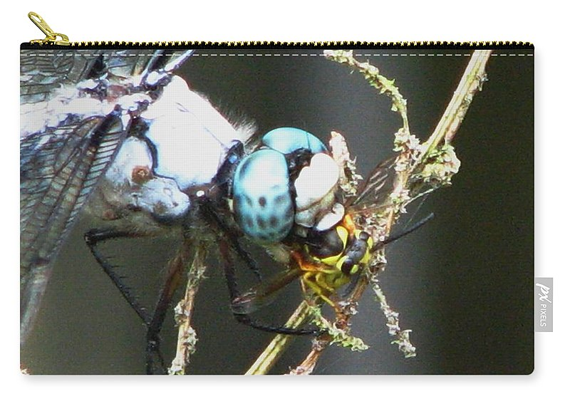 Dragonfly Carry-all Pouch featuring the photograph Dragonfly With Yellowjacket 3 by J M Farris Photography