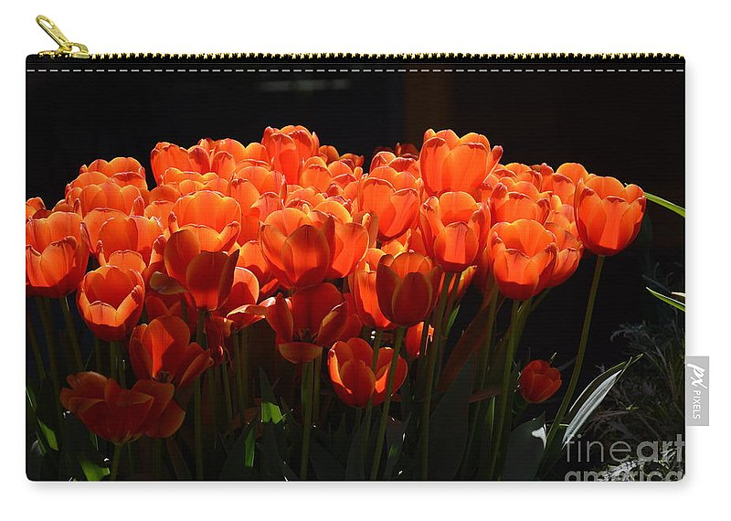 Carry-all Pouch featuring the painting Sprinkled With Gold by Constance Woods
