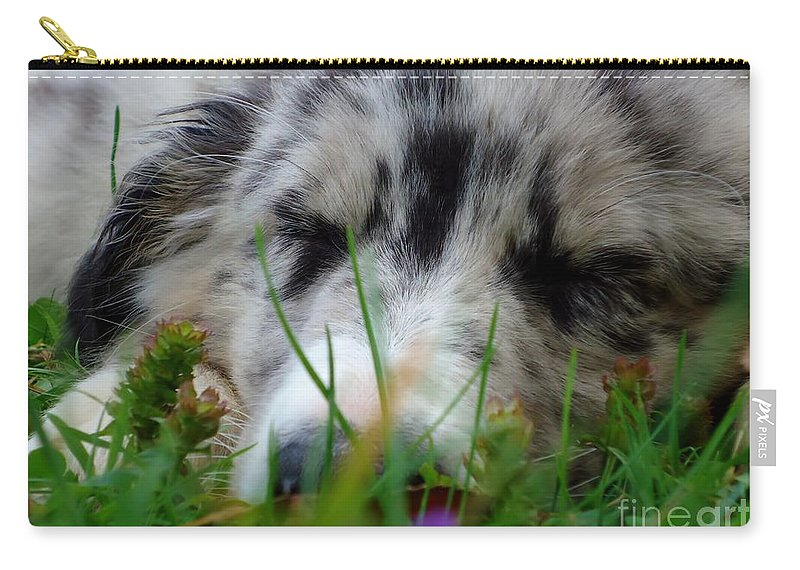 Puppy Carry-all Pouch featuring the photograph Dreamer by Art Dingo