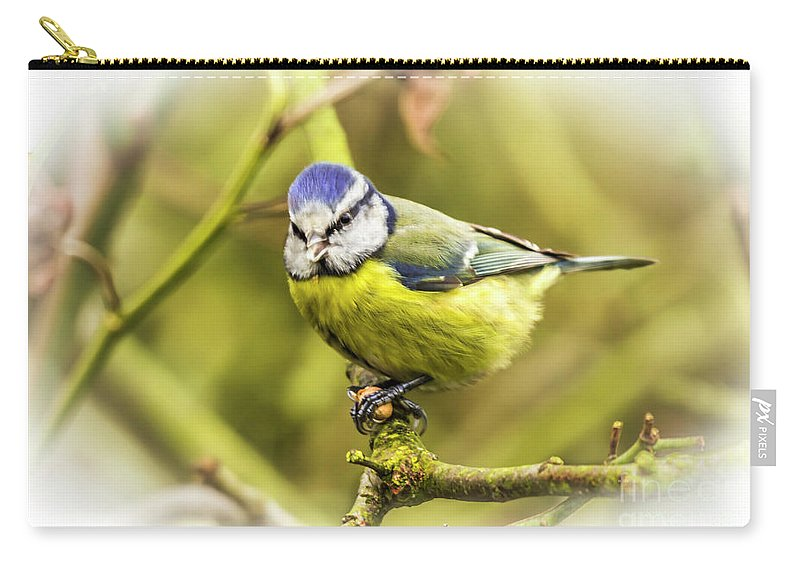 Blue Carry-all Pouch featuring the photograph Dreamy Blue Tit Chirping by Nigel Dudson