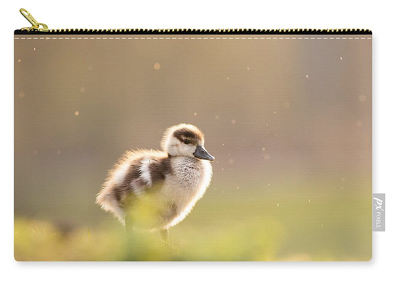 Gosling Carry-all Pouch featuring the photograph Dreamy Duckling by Roeselien Raimond