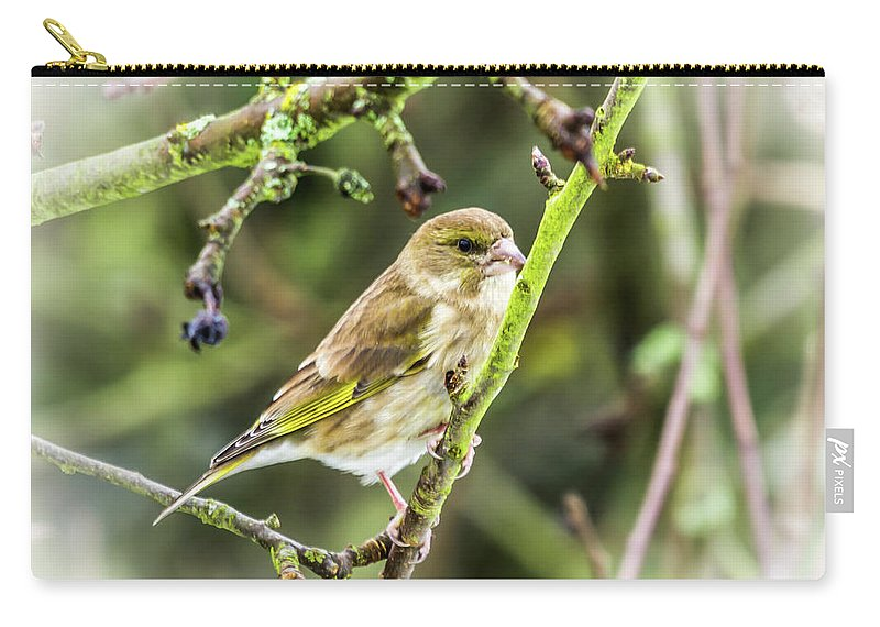 Britain Carry-all Pouch featuring the photograph Dreamy Greenfinch. by Nigel Dudson