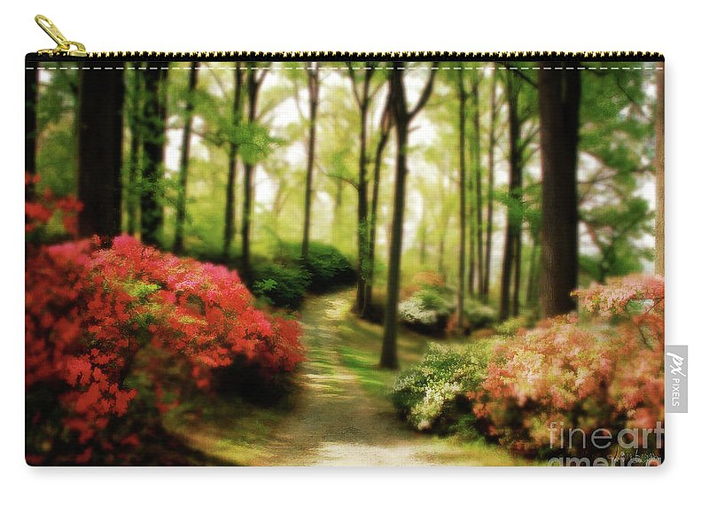 Landscape Carry-all Pouch featuring the photograph Dreamy Path by Lois Bryan