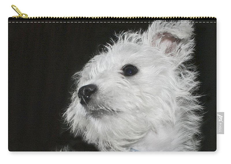 White Carry-all Pouch featuring the photograph Dreamy Puppy by Terri Waters