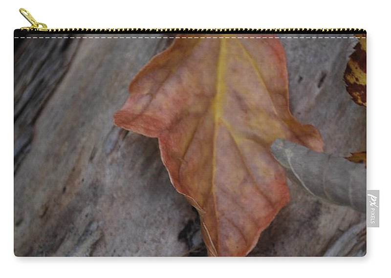 Fall Carry-all Pouch featuring the photograph Dried Leaf On Log by Heather Kirk