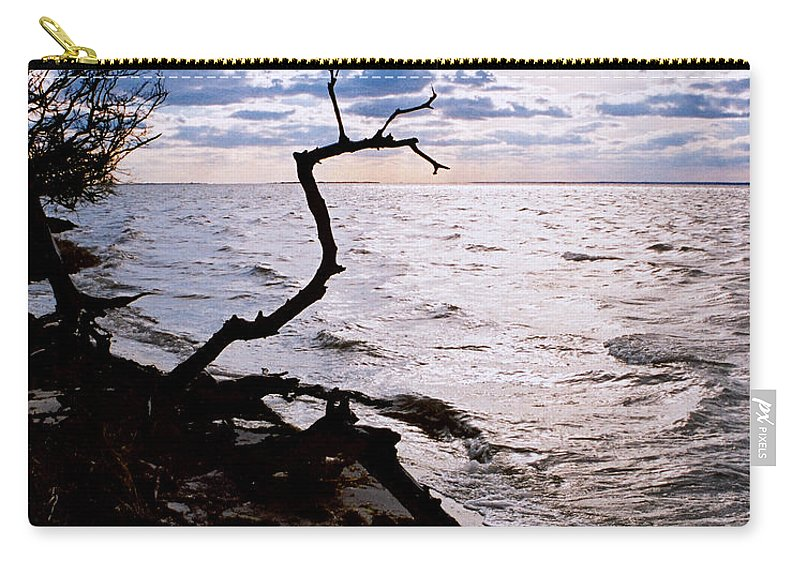 Barnegat Carry-all Pouch featuring the photograph Driftwood Dragon-Barnegat Bay by Steve Karol
