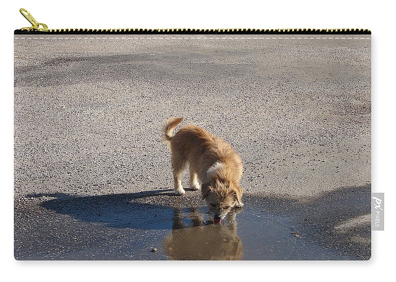 Dog Carry-all Pouch featuring the photograph Drinking Enough For Reflection And Shadow by J R  Seymour