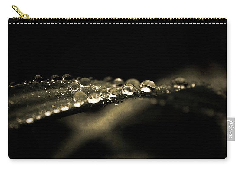 Water Carry-all Pouch featuring the photograph Droplets2 by Danielle Silveira