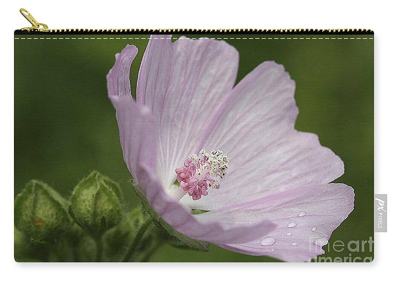 Flower Carry-all Pouch featuring the photograph Drops Of Dew by Deborah Benoit