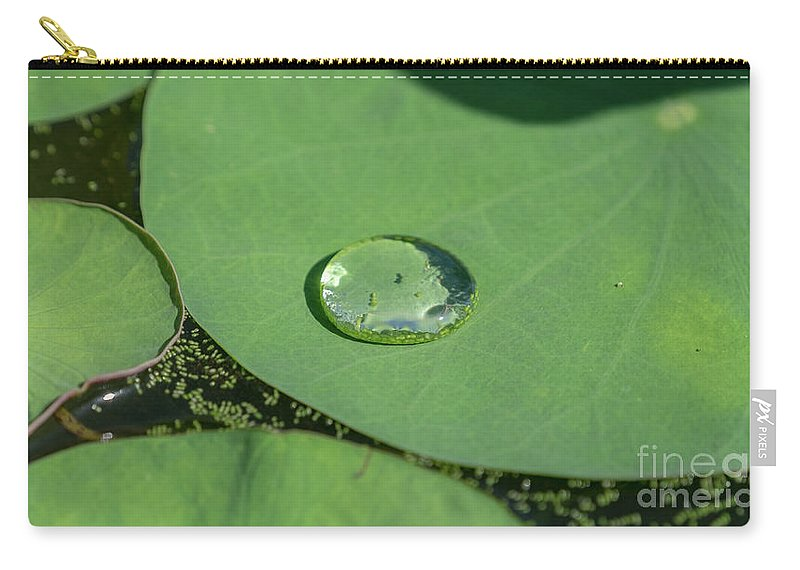Lotus Carry-all Pouch featuring the photograph Drops On Lotus Leaf by Que Siam