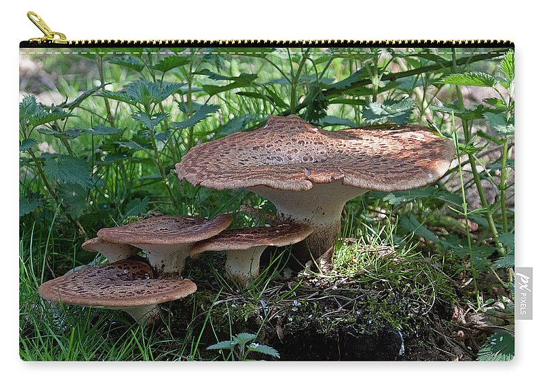 Fungus Carry-all Pouch featuring the photograph Dryad's Saddle Fungus by Bob Kemp