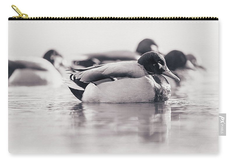 Carry-all Pouch featuring the photograph Duck On Water by Annette Bush