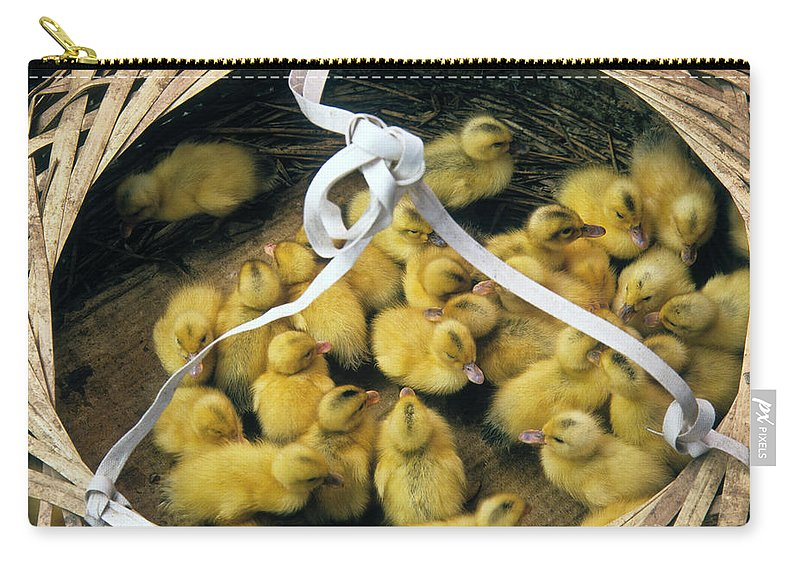 China Carry-all Pouch featuring the photograph Ducklings In A Basket by Michele Burgess