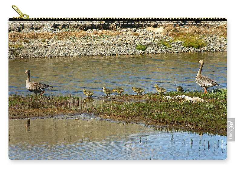 Ducks Carry-all Pouch featuring the photograph Ducks In A Row by Anthony Jones