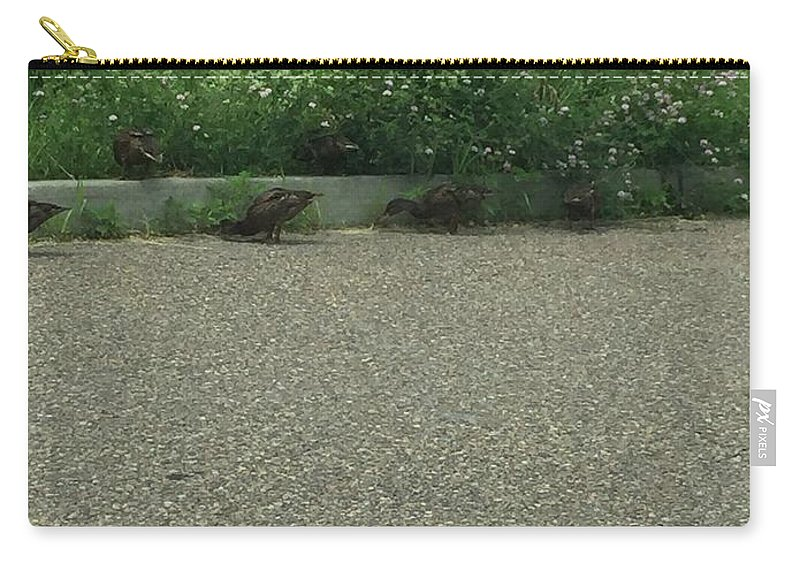 Ducks Carry-all Pouch featuring the photograph Ducks In A Row by Sarah Campbell