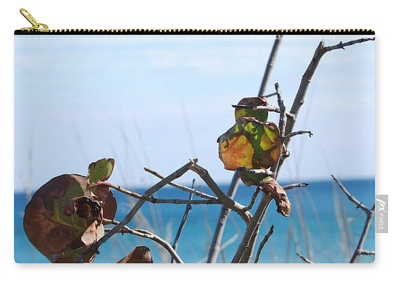Ocean Carry-all Pouch featuring the photograph Dune Plants by Rob Hans