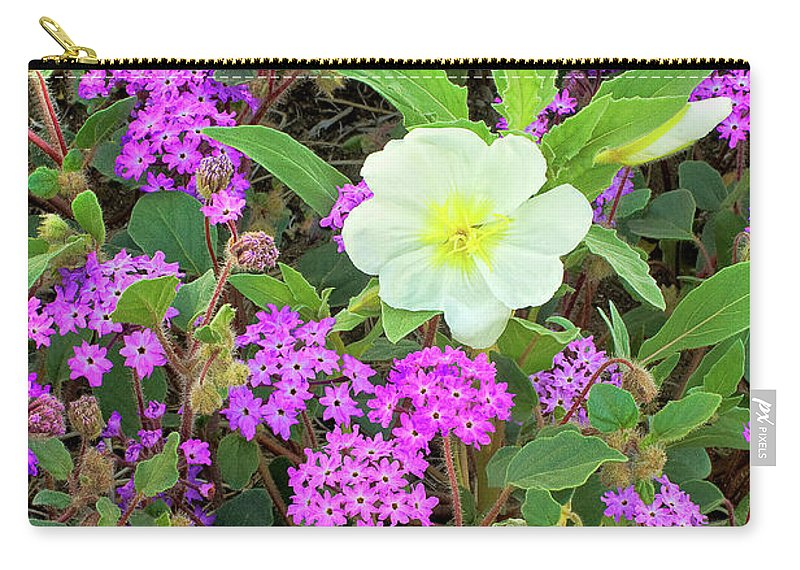 Dave Welling Carry-all Pouch featuring the photograph Dune Primrose Oenothera Deltoides And Purple Sand Verbena by Dave Welling