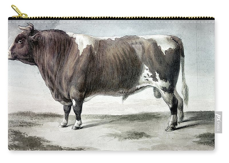 1856 Carry-all Pouch featuring the photograph Durham Bull, 1856 by Granger
